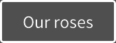 Button_our_roses